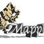 Mapple Stainless Processing